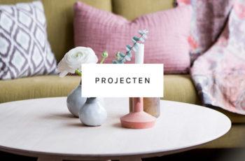 Projecten